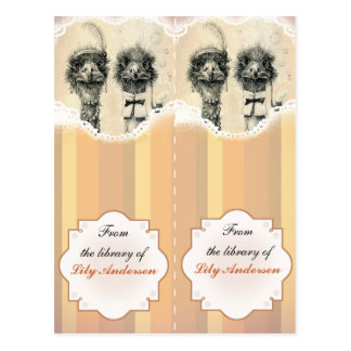 Mr. and Mrs. Ostrich Bookmark - from the library Postcard