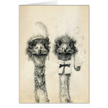 Mr. and Mrs. Ostrich Card