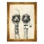 Mr. and Mrs. Ostrich framed Post Card