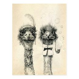 Mr. and Mrs. Ostrich Postcard