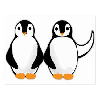 Mr. and Mrs. Penguin Design Postcard