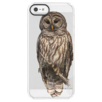 Mr Barred Owl -  iPhone SE   iPhone 5/5s Permafrost iPhone SE/5/5s Case