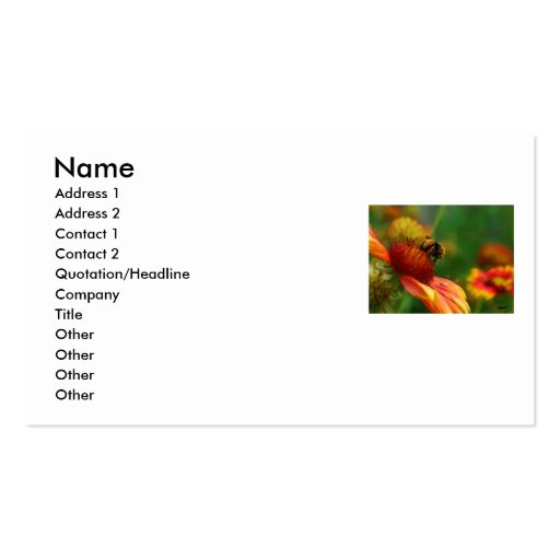 MR BUMBLE BUSINESS CARD... Double-Sided STANDARD BUSINESS CARDS (Pack OF 100)