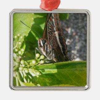 Mr Butterfly Metal Ornament