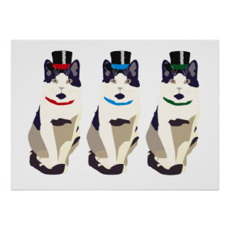 Mr Cat in Top hat Poster