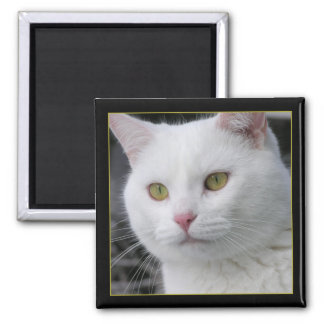 Mr. Cat Portrait 2 Inch Square Magnet