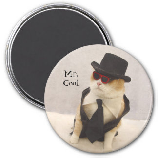 Mr. Cool 3 Inch Round Magnet