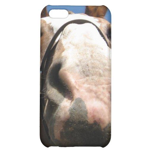 Mr.Ed iPhone 5C Case
