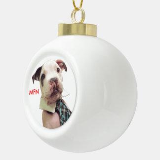 Mr Fig Newton Ornament #1