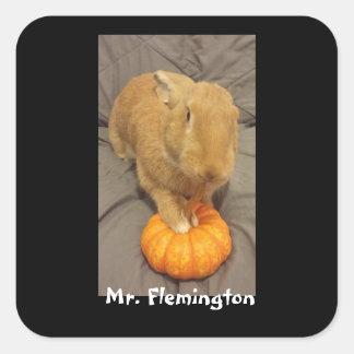 Mr. Flemington Sticker