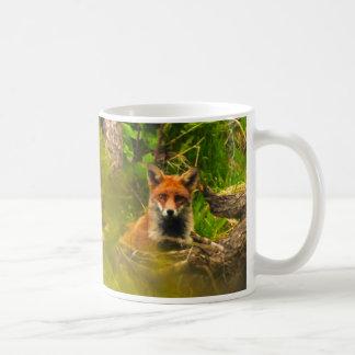Mr FOX Mugs
