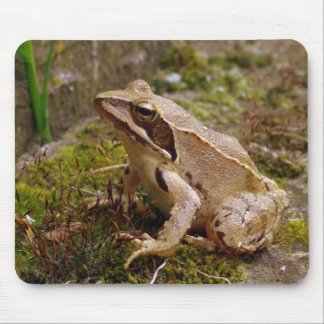 Mr. Frog Mouse Pad
