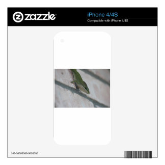 Mr Green Lizard Decals For iPhone 4