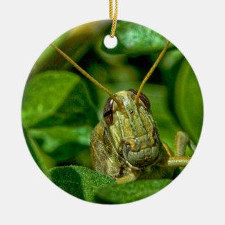Mr. Green Christmas Ornament