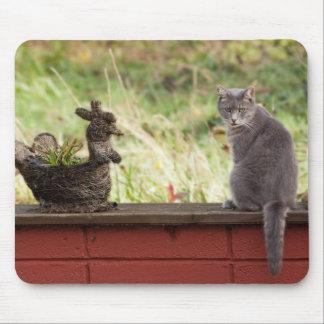Mr Greyling mousepad