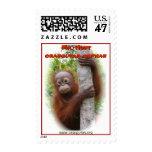 Mr. Hunt Orangutan Orphan Postage
