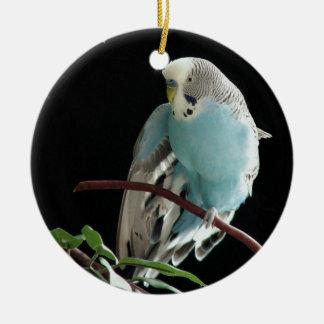 Mr. Jill Budgie Round Ornament