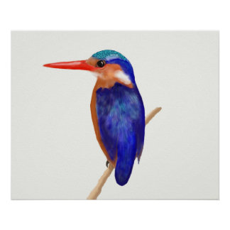 Mr Kingfisher Poster