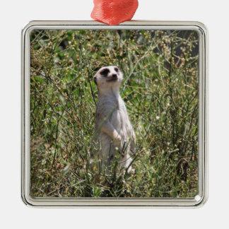 Mr Meerkat Metal Ornament