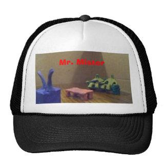 Mr. Mister Hats