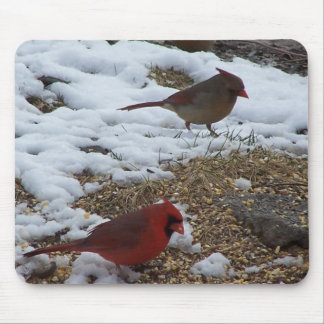 Mr.&Mrs. Cardinal Feeding On The Ground Mouse Pad