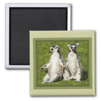 Mr & Mrs Lemur 2 Inch Square Magnet