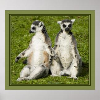 Mr Mrs Lemur Posters