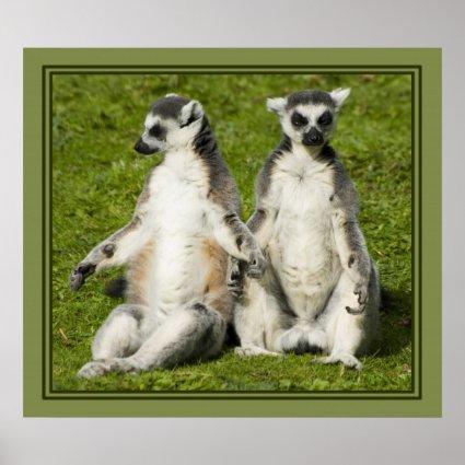 Mr & Mrs Lemur Posters