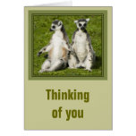 Mr & Mrs Lemur Thinking of you Card