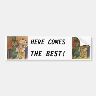mr n mrs cat bumper sticker