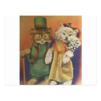 mr n mrs cat postcard