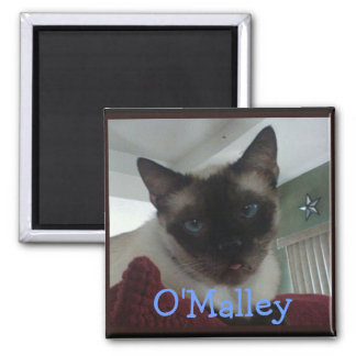 Mr. O'Malley Refrigerator Magnet