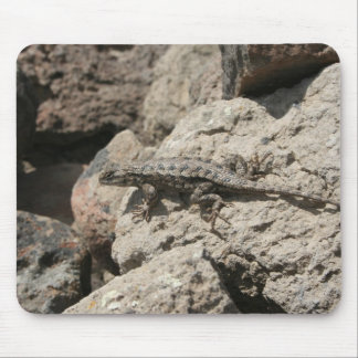 Mr or Mrs Lizard Mouse Pad
