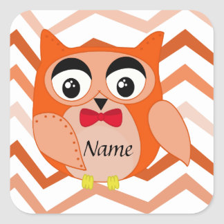 Mr owl is a cute orange and brown owl illustration square sticker