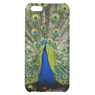 Mr. Peacock iPhone 5C Cover