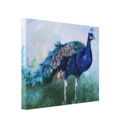 Mr. Peacock Stretched Canvas
