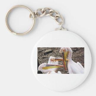 Mr  Pelican's Look Basic Round Button Keychain