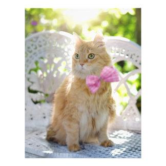 Mr Perkins Proper Kitty Letterhead