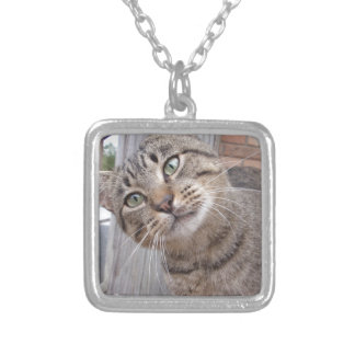 Mr Personality the Tabby Cat Custom Necklace