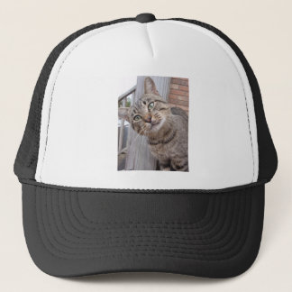 Mr Personality the Tabby Cat Trucker Hat