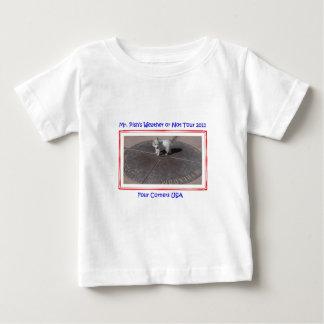 Mr. Pish at Four Corners USA Tshirts