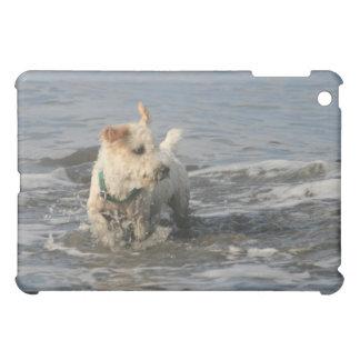 Mr. Pish at Ruby Beach Case For The iPad Mini