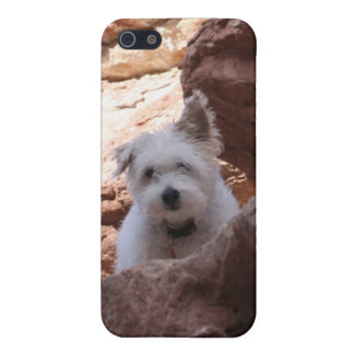 Mr. Pish at the Grand Canyon! Case For iPhone SE/5/5s