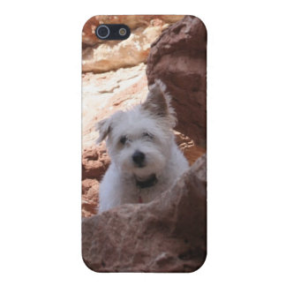 Mr. Pish at the Grand Canyon! iPhone SE/5/5s Case