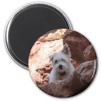 Mr. Pish at the Grand Canyon! Magnet