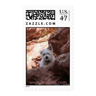 Mr. Pish at the Grand Canyon Stamp
