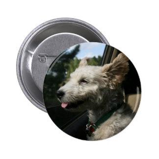 Mr. Pish Enjoys the Summer Breeze! Buttons