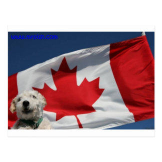 Mr. Pish Loves Canada! Postcard