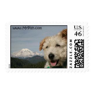 Mr. Pish Visits Mount Rainier Postage Stamp