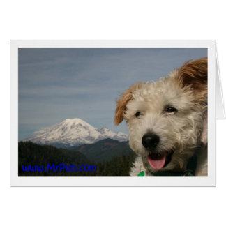 Mr. Pish Visits Mt. Rainier Cards